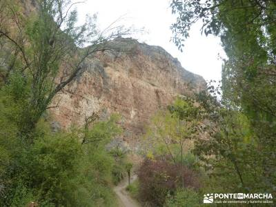 Hoces Río Duratón - Villa Sepúlveda; parque nacional de las islas atlánticas ruta por asturias y